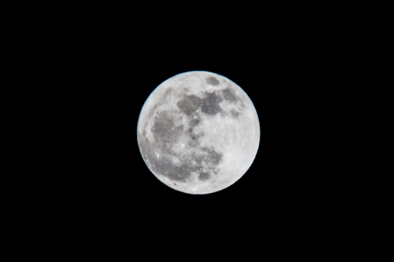 The Moon-6951
