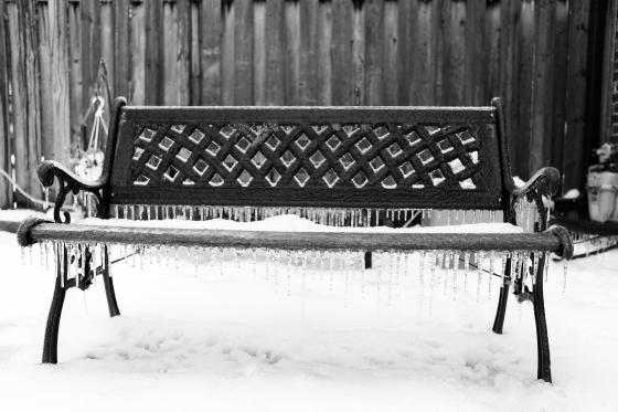 Toronto Ice Storm-11521-2