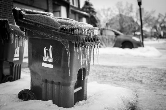 Toronto Ice Storm-11564-2