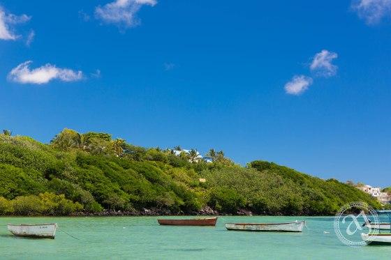 Mauritian Landscapes-12530