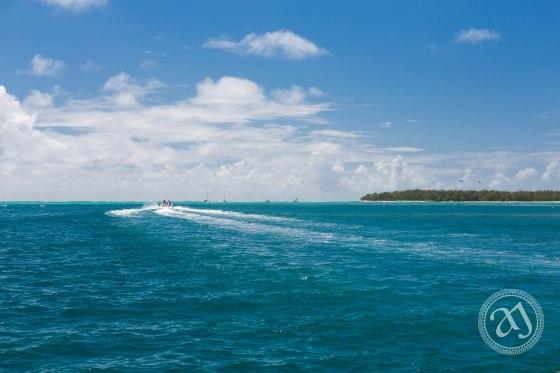Mauritian Landscapes-12555